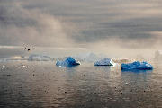 Isbjerge i morgentågen