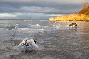Isklædte sten og gyldne siv i Isefjorden