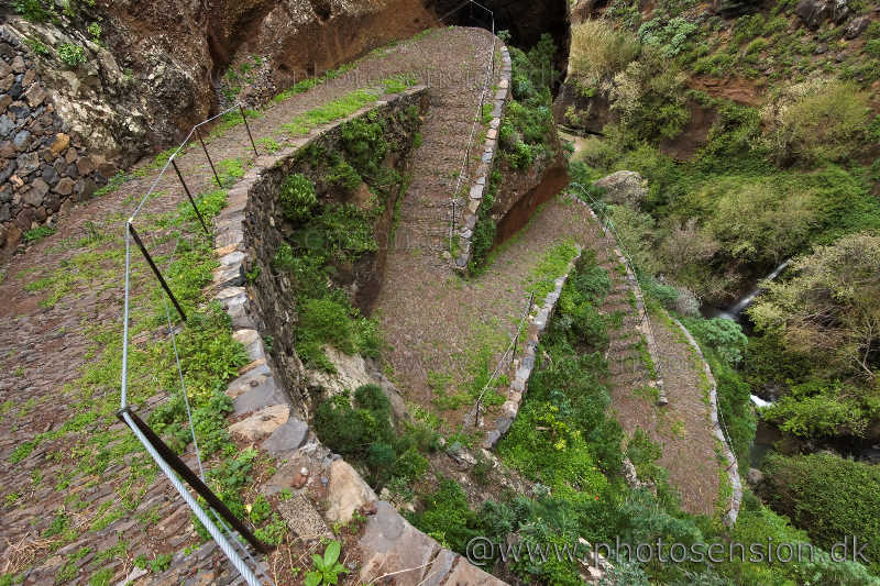 Stien mellem Paul do Mar og Prazeres