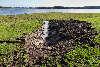 Mere landbrugs-spildevand ud i fjorden