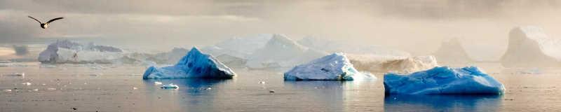 Naturfotograf Allan Hansen ved Antarktis