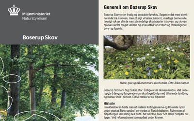 boserup-skov-folder.jpg